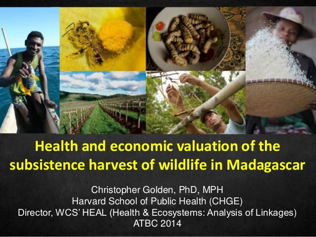 Christopher Golden, PhD, MPH Harvard School of Public Health (CHGE) Director, WCS' HEAL (Health & Ecosystems: Analysis of ...