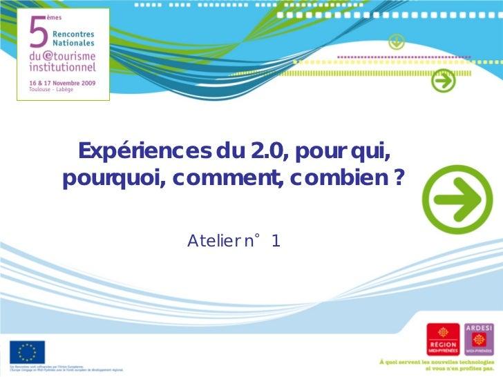 Expériences 2.0 : pourquoi, pour qui, comment, combien ? (2009)