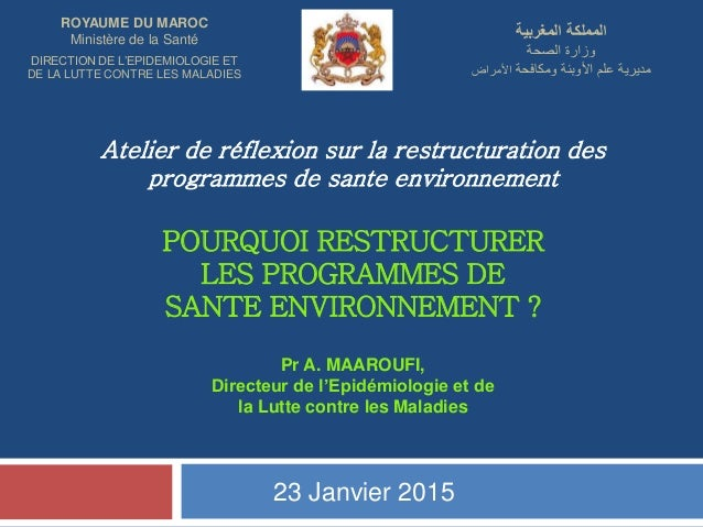Atelier de réflexion sur la restructuration des programmes de sante environnement POURQUOI RESTRUCTURER LES PROGRAMMES DE ...