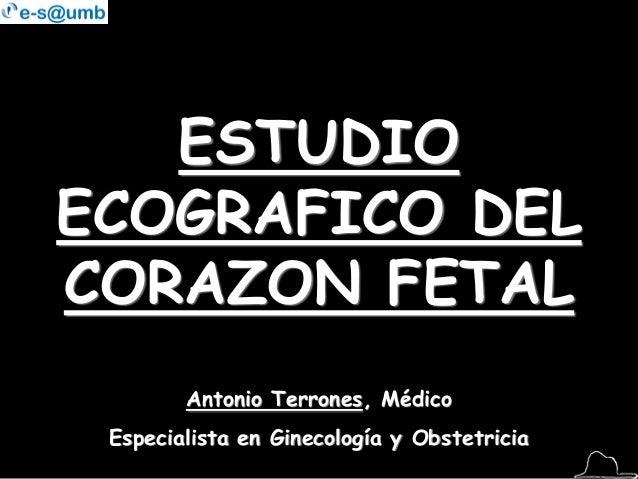 ESTUDIO ECOGRAFICO DEL CORAZON FETAL Antonio Terrones, Médico Especialista en Ginecología y Obstetricia