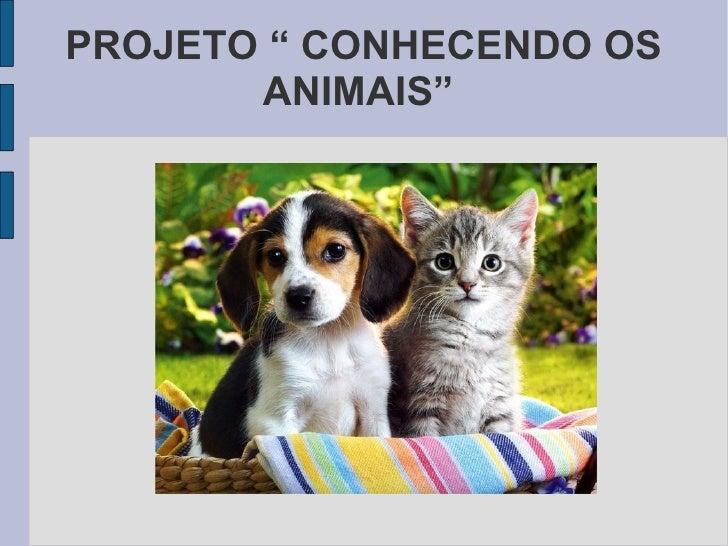 """PROJETO """" CONHECENDO OS ANIMAIS"""""""