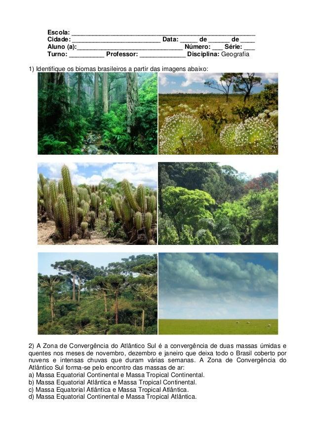 Atividades brasil clima e vegetação