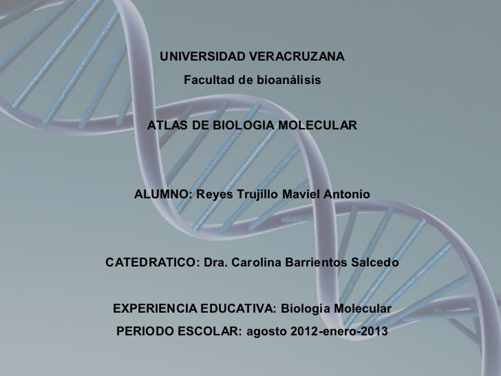 UNIVERSIDAD VERACRUZANA           Facultad de bioanálisis      ATLAS DE BIOLOGIA MOLECULAR    ALUMNO: Reyes Trujillo Mavie...