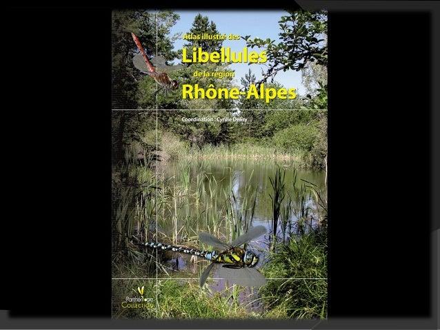 Atlas illustré des Libellules de la région Rhône-  Alpes (Coordination : Cyrille Deliry)  Avec 83 espèces de libellules, l...