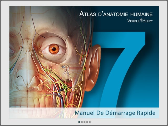 L'Atlas d'anatomie humaine de Visible Body (PC/Mac)