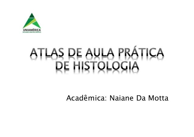 Acadêmica: Naiane Da Motta