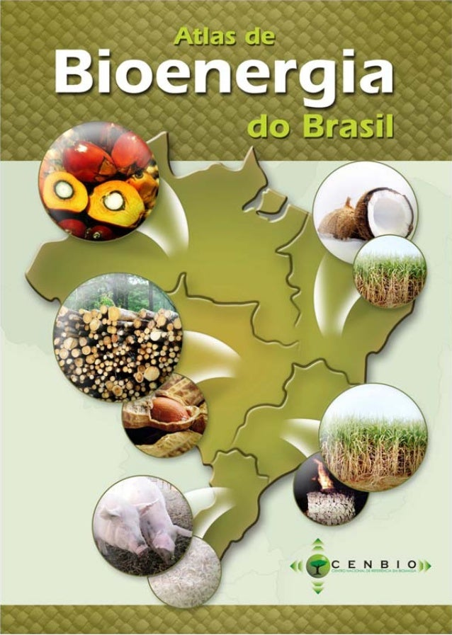 Centro Nacional de Referência em Biomassa – CENBIO  Projeto Fortalecimento Institucional do CENBIO Convênio 007/2005 - MME...
