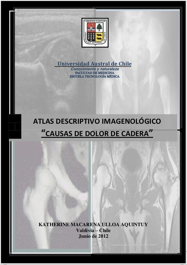 Universidad Austral de Chile                      Conocimiento y naturaleza                        FACULTAD DE MEDICINA   ...