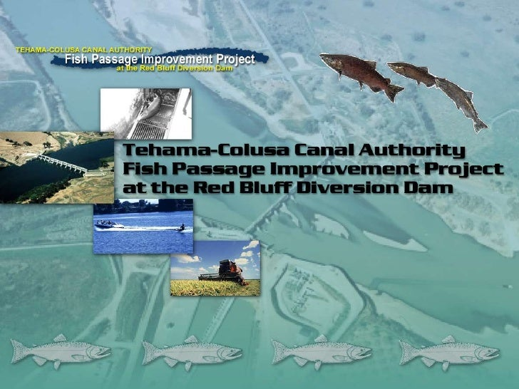 Fish Passage Improvement Project