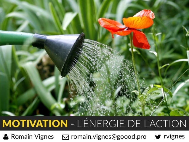 MOTIVATION - L'ÉNERGIE DE L'ACTION rvignesromain.vignes@goood.proRomain Vignes