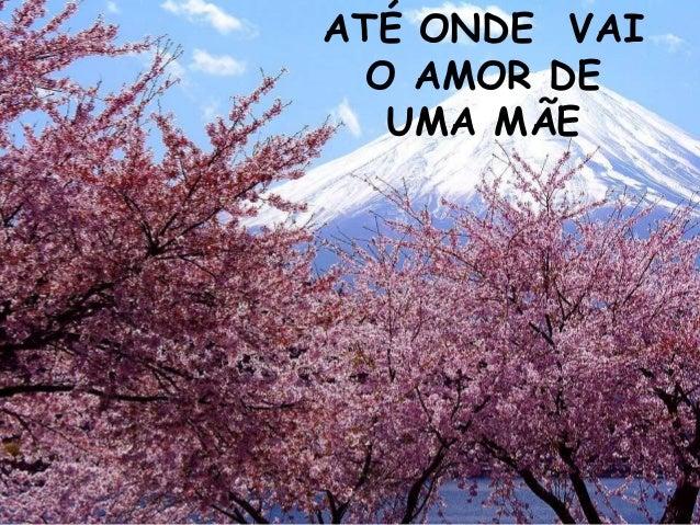 ATÉ ONDE VAI O AMOR DE UMA MÃE
