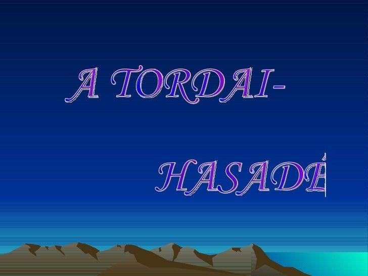 A TORDAI- HASADÉK