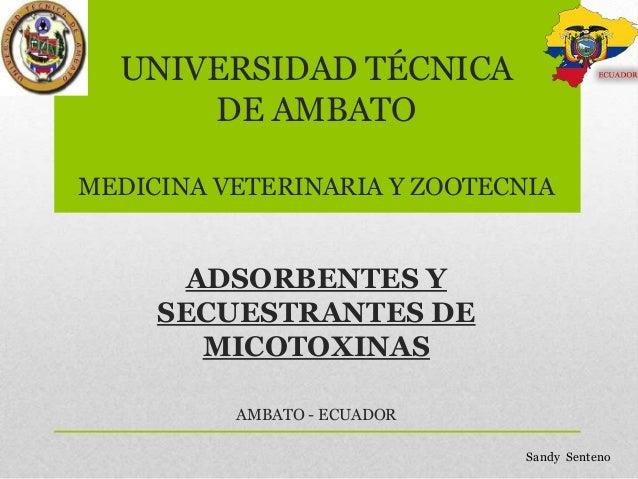 UNIVERSIDAD TÉCNICA DE AMBATO MEDICINA VETERINARIA Y ZOOTECNIA  ADSORBENTES Y SECUESTRANTES DE MICOTOXINAS AMBATO - ECUADO...