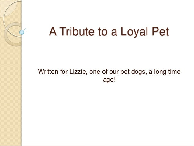 A Tribute to a Loyal Pet Written for Lizzie, one of our pet dogs, a long time ago!