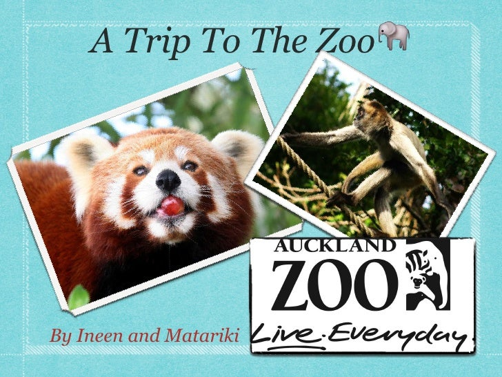 A Trip To The Zoo🐘By Ineen and Matariki