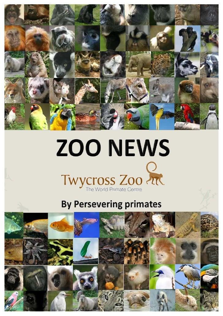 Twycross Zoo Newsletter - Team Perservering Primates
