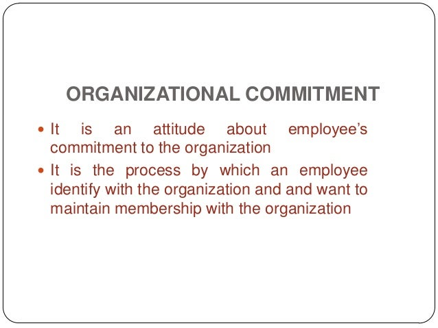 employee commitment and attitude In response to an employee attitude survey job satisfaction and organizational commitment are two key attitudes that are the most relevant to important outcomes.