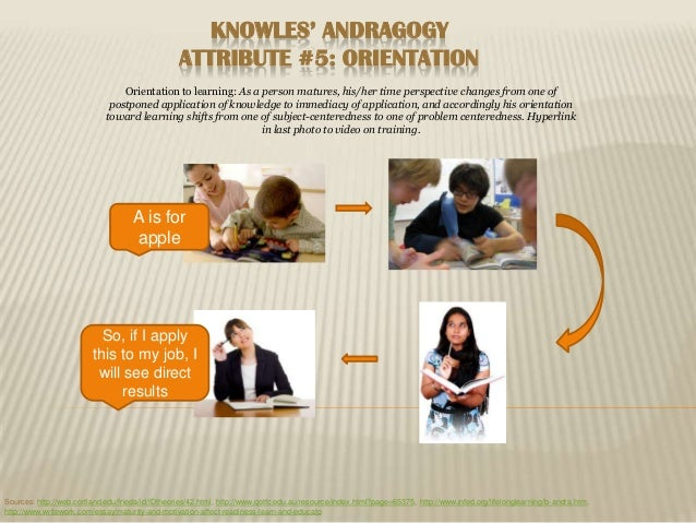KNOWLES' ANDRAGOGY                                                  ATTRIBUTE #5: ORIENTATION                             ...