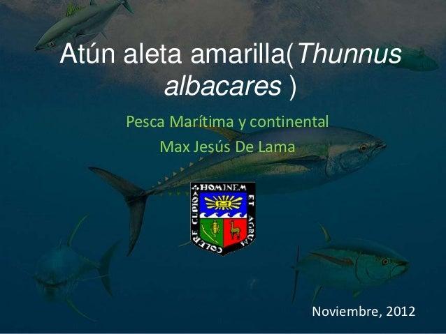 Atún aleta amarilla(Thunnus        albacares )     Pesca Marítima y continental         Max Jesús De Lama                 ...