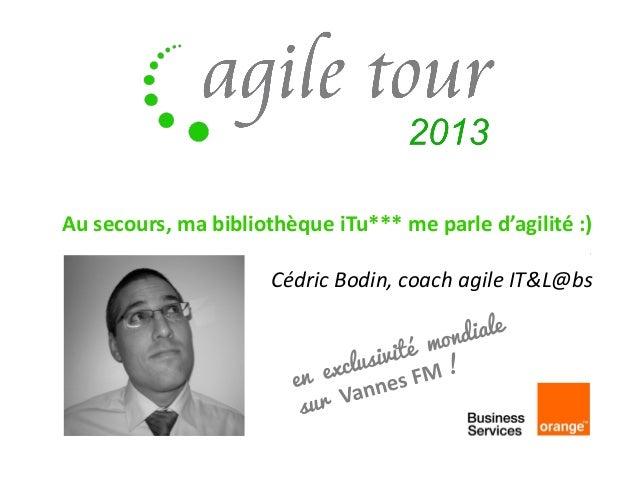 Au secours, ma bibliothèque iTu*** me parle d'agilité :) Cédric Bodin, coach agile IT&L@bs