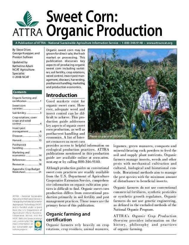Sweetpotato: Organic Production