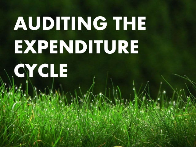 the expenditure cycle Learning objectives explain the basic business activities and related information  processing operations performed in the expenditure cycle discuss the key.