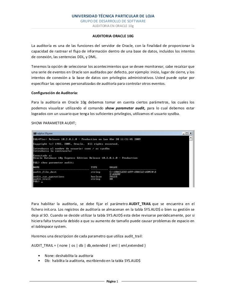 Auditoria Oracle 10g