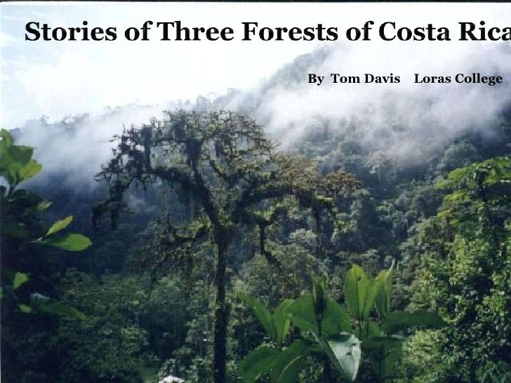Stories of Three Forests of Costa Rica   <br />By  Tom Davis    Loras College Biology <br />
