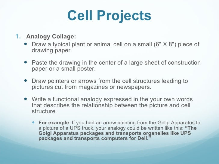 Plant cell essay
