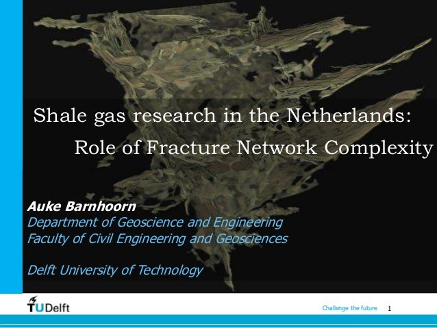 Shale gas research in the Netherlands: Role of Fracture Network Complexity Auke Barnhoorn Department of Geoscience and Eng...