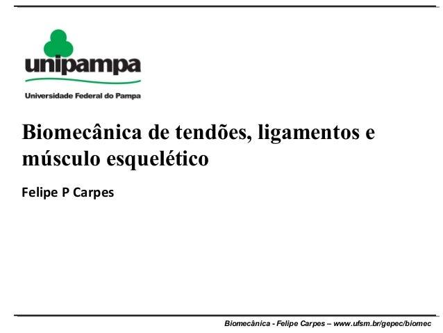 Biomecânica - Felipe Carpes – www.ufsm.br/gepec/biomecFelipe P CarpesBiomecânica de tendões, ligamentos emúsculo esquelético