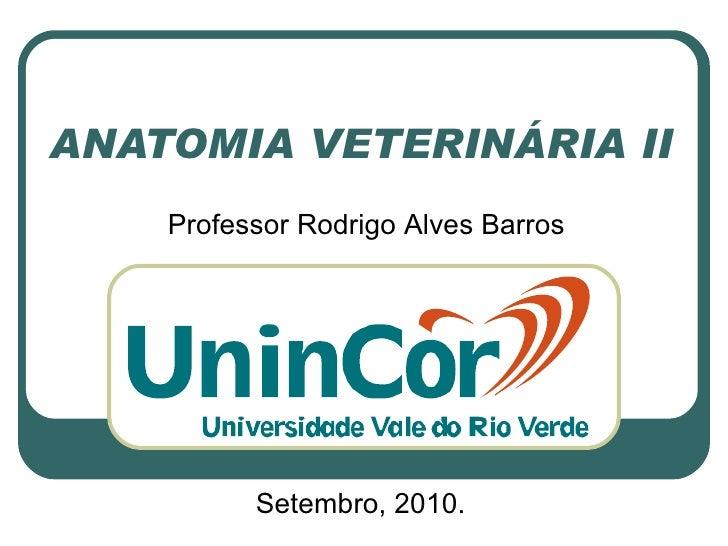 ANATOMIA VETERINÁRIA II Setembro, 2010. Professor Rodrigo Alves Barros