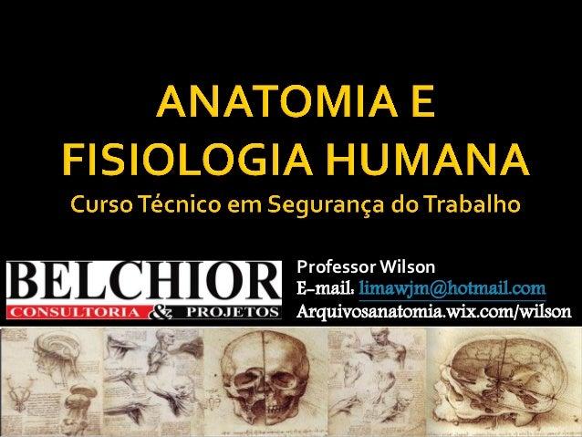 Professor Wilson  E-mail: limawjm@hotmail.com  Arquivosanatomia.wix.com/wilson