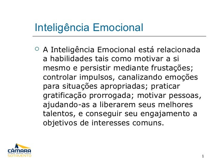 Inteligência Emocional <ul><li>A Inteligência Emocional está relacionada a habilidades tais como motivar a si mesmo e pers...
