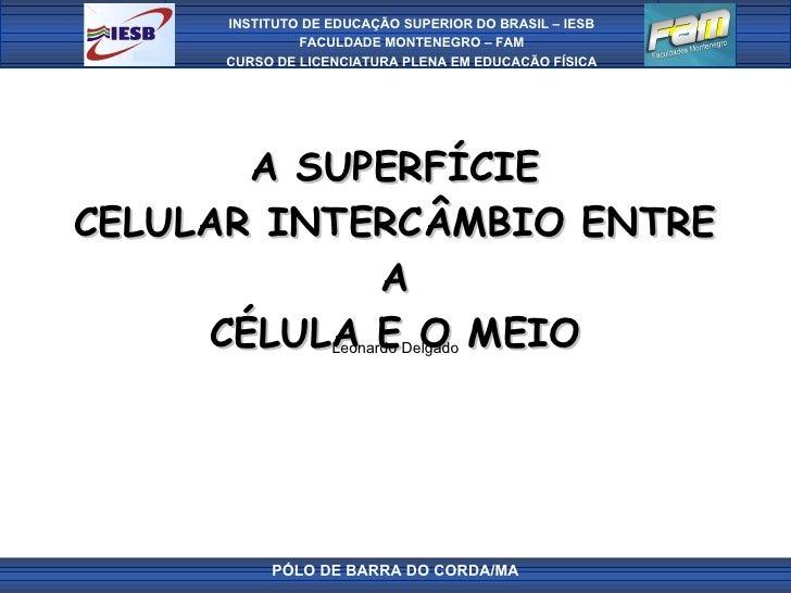 A SUPERFÍCIE CELULAR INTERCÂMBIO ENTRE A CÉLULA E O MEIO Leonardo Delgado