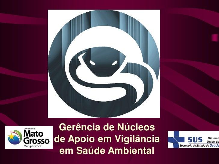 Gerência de Núcleosde Apoio em Vigilância em Saúde Ambiental