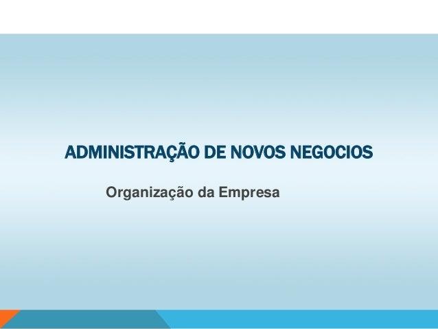 ADMINISTRAÇÃO DE NOVOS NEGOCIOS Organização da Empresa