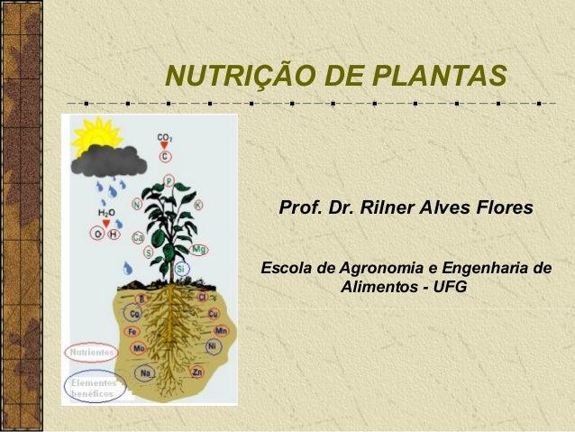 NUTRIÇÃO DE PLANTAS       Prof. Dr. Rilner Alves Flores     Escola de Agronomia e Engenharia de               Alimentos - ...