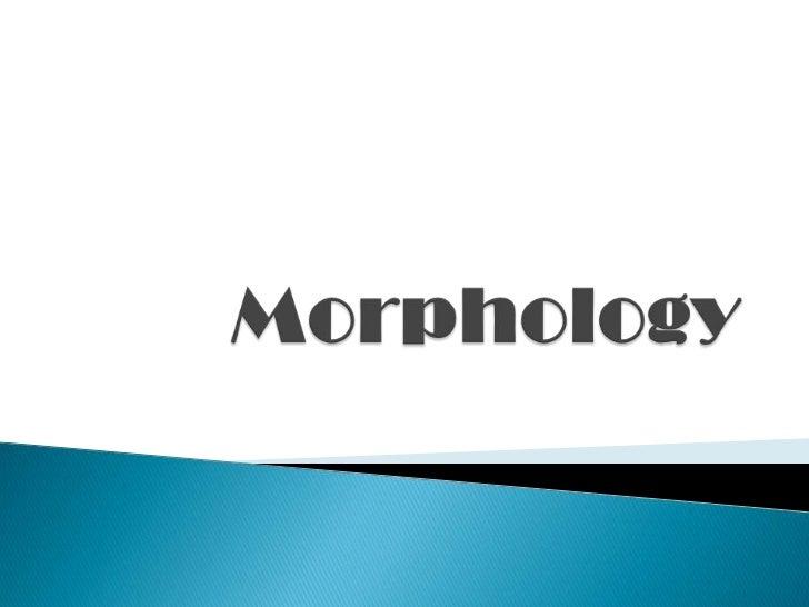 Aula 1   morphemes and allomorphs