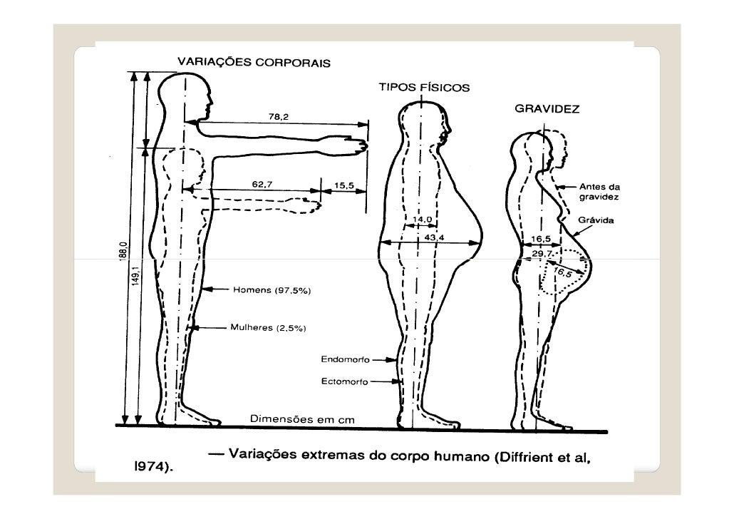 Aula 4 antropometria modo de compatibilidade for Antropometria estatica