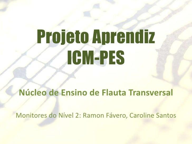 Projeto Aprendiz          ICM-PESNúcleo de Ensino de Flauta TransversalMonitores do Nível 2: Ramon Fávero, Caroline Santos