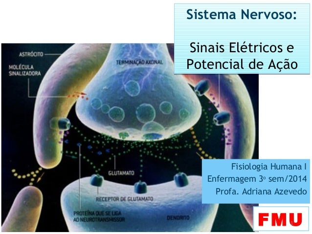 FMU1 Sistema Nervoso: Sinais Elétricos e Potencial de Ação Sistema Nervoso: Sinais Elétricos e Potencial de Ação Fisiologi...