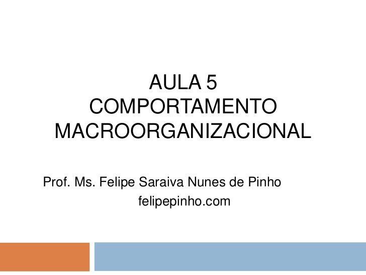 Aula 5   comportamento macroorganizacional