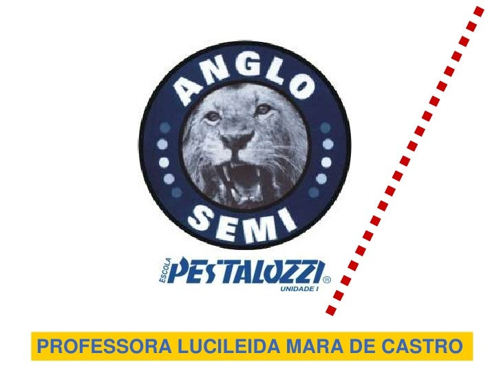 PROFESSORA LUCILEIDA MARA DE CASTRO<br />