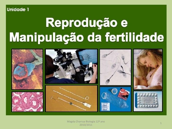 Magda Charrua Biologia 12º ano 2010/2011