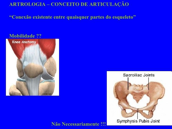 """ARTROLOGIA – CONCEITO DE ARTICULAÇÃO """" Conexão existente entre quaisquer partes do esqueleto"""" Mobilidade ??  Não Necessari..."""