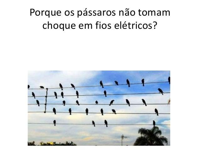 Porque os pássaros não tomam choque em fios elétricos?