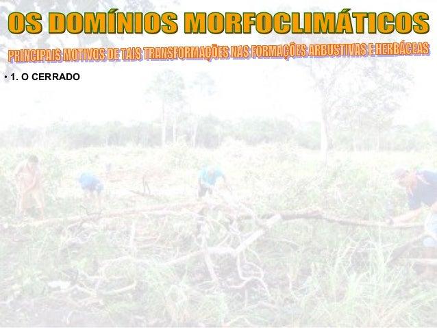Aula dominios morfoclimaticos_do_brasil_16-05-2012_parte2