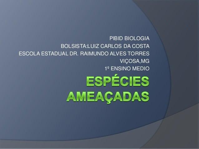 PIBID BIOLOGIA BOLSISTA:LUIZ CARLOS DA COSTA ESCOLA ESTADUAL DR. RAIMUNDO ALVES TORRES VIÇOSA,MG 1º ENSINO MEDIO