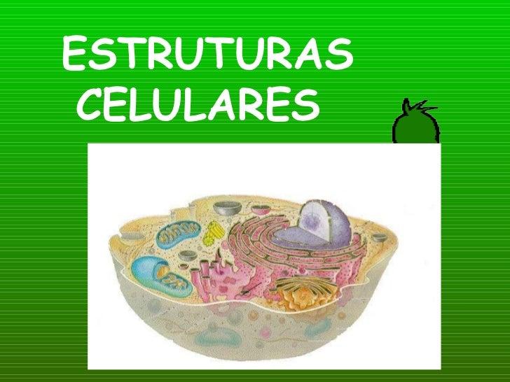 ESTRUTURAS CELULARES